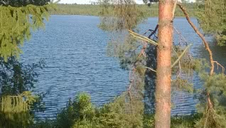 Дом на берегу озера Велье