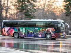 Продается автобус-клуб 'Partybus'