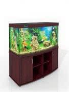 Магазин аквариумов и террариумов ZelAqua