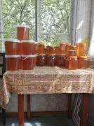 Продаю северный мёд с лесной пасеки