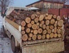 Сосновые дрова чурками