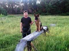 Дрессировка собак от инструктора служебного собаководства