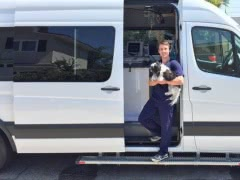 Помощь ветеринара на дому